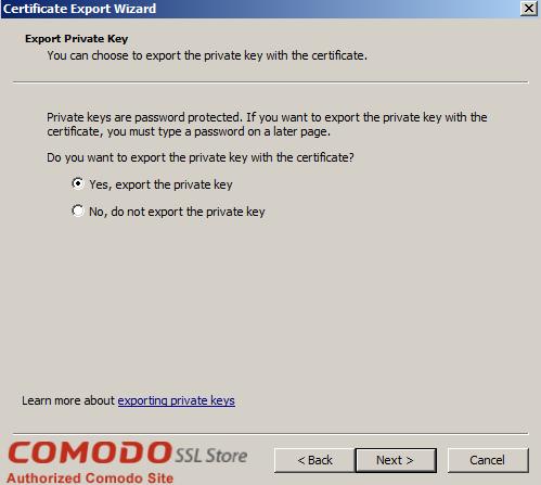 SSL Export into Windows Server - 10