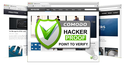Hackerproof Pointtoverify